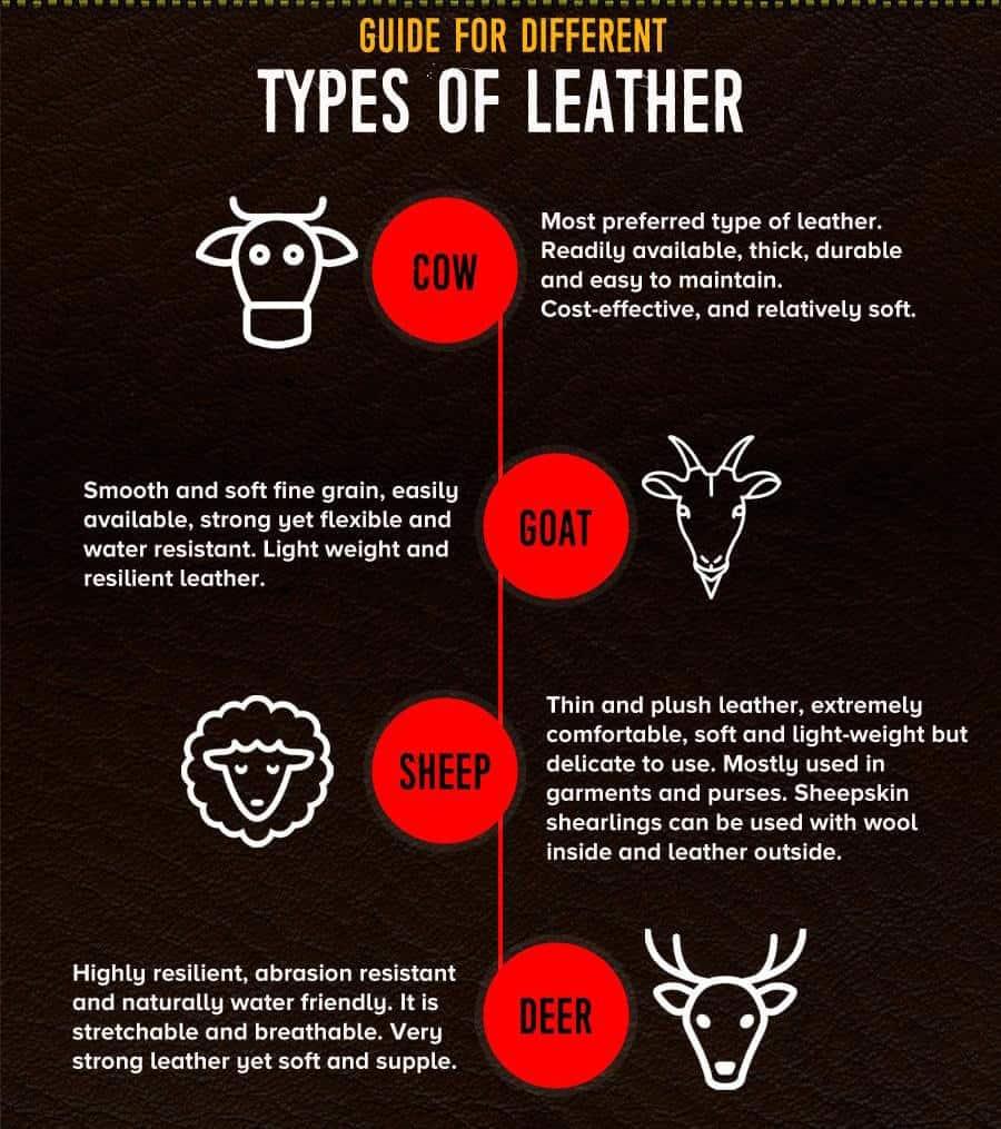 karakter kulit hewan